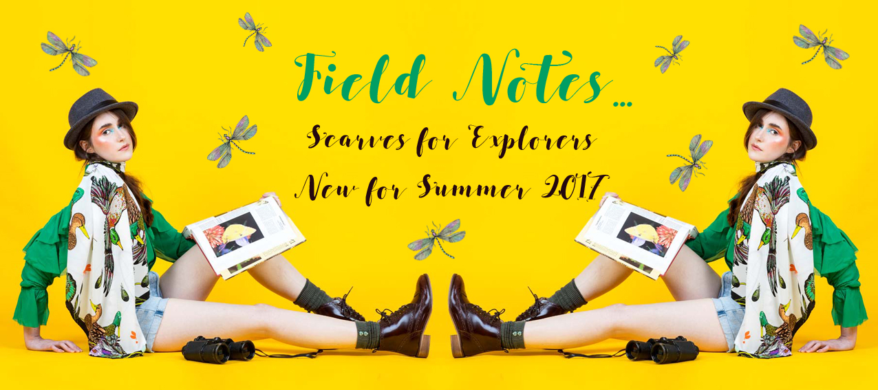 field-notes-banner
